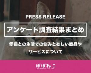 愛猫との生活での悩みと欲しい商品やサービスについての 「アンケート調査」結果報告