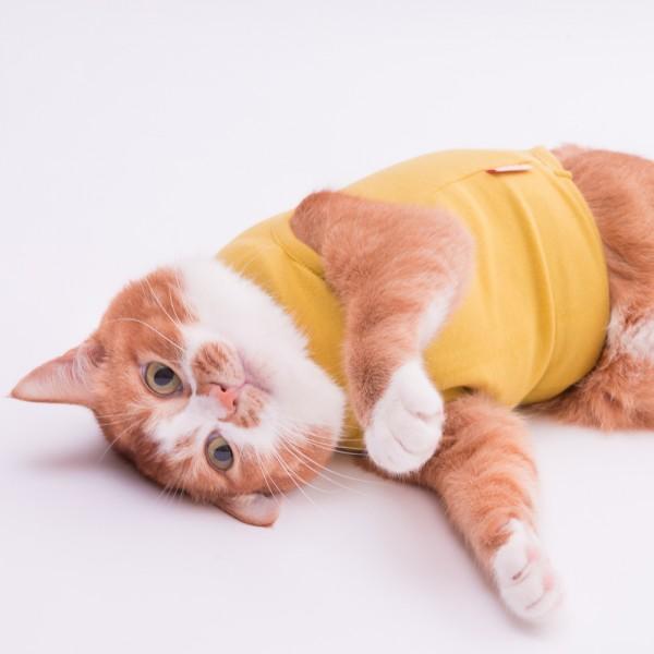 猫に優しい猫服 キャットウォームタンク 無地