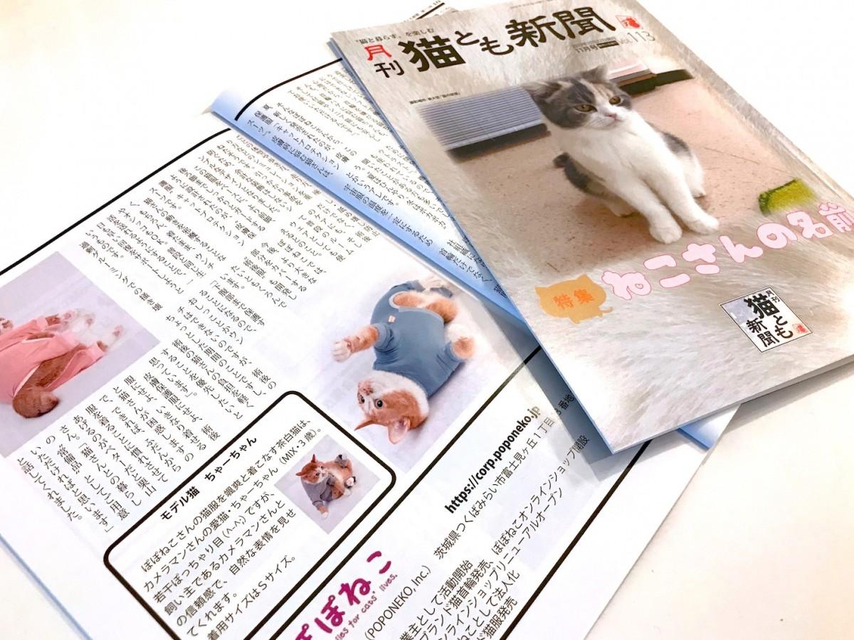 月刊猫とも新聞にインタビューが掲載されました