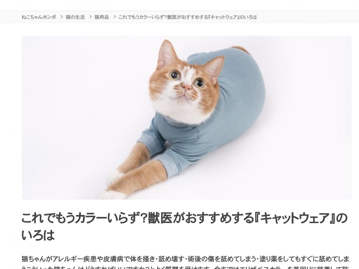 【メディア掲載】ねこちゃんホンポ 獣医師監修記事にて皮膚保護服キャットプロテクションスーツが紹介されました