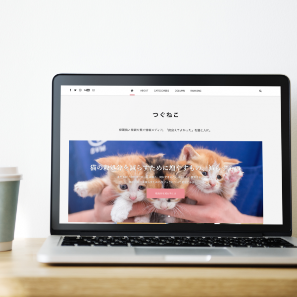 つぐねこ|保護猫と里親を繋ぐ情報メディア